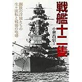 戦艦十二隻 鋼鉄の浮城たちの生々流転と戦場の咆哮 (光人社NF文庫)