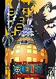 ONE PIECE ワンピース 10THシーズン スリラーバーク篇 PIECE.14 [DVD]