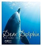 イルカ大好き! 御蔵島の野生のイルカ