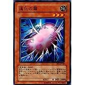 【シングルカード】遊戯王 進化の繭 BE1-JP148 ノーマル