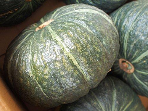 北海道産 かぼちゃ くりふぶき 5?8玉入り 10kg (A品 5〜6玉入り 10kg)