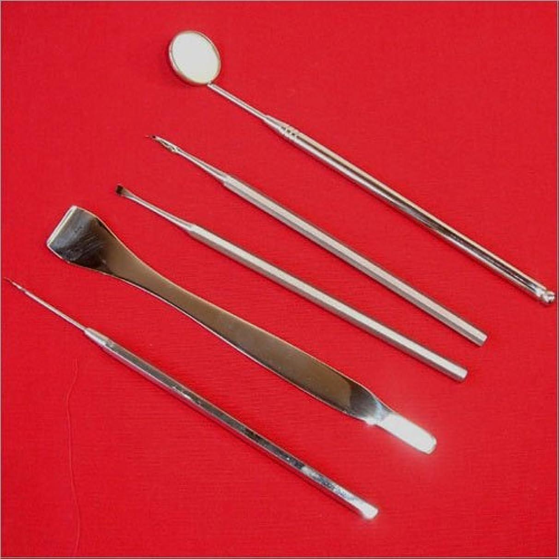 眉をひそめる十分に十二岐阜県関の伝統 歯石取りデンタルケアセット