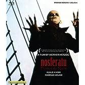 ノスフェラトゥ Blu-ray