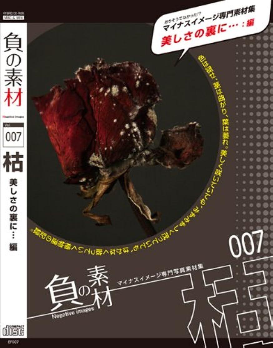 止まる任命するシールド負の素材vol.007【枯:美しさの裏に…】編