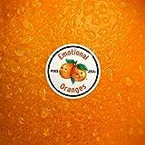 The Juice: Vol. I [Explicit]