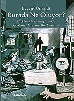 Burada Ne Oluyor?; Türkiye'de Etkilesimlerin Ekolojisi Üzerine Bir Deneme
