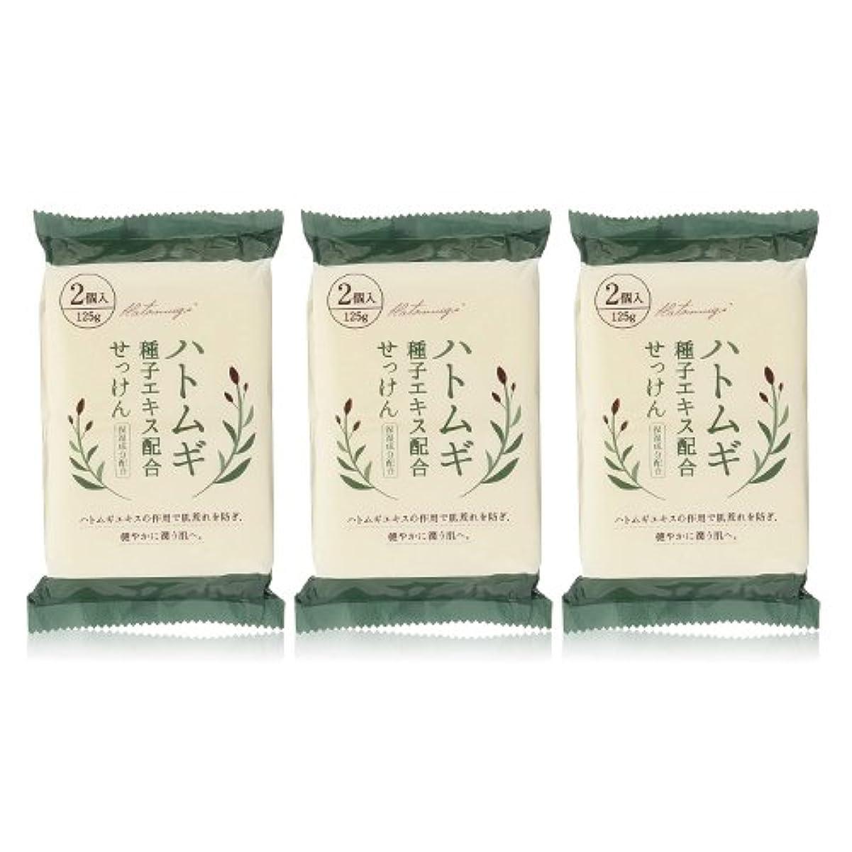 比類なき濃度ハイキングハトムギ種子エキス配合石けん 125g(2コ入)×3個セット(計6個)