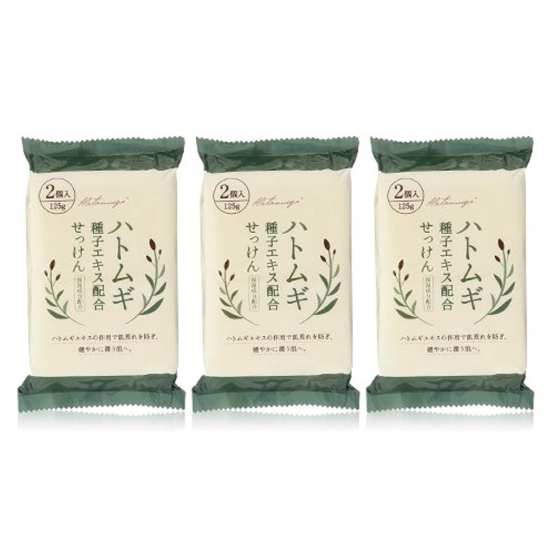見込みオリエント阻害するハトムギ種子エキス配合石けん 125g(2コ入)×3個セット(計6個)