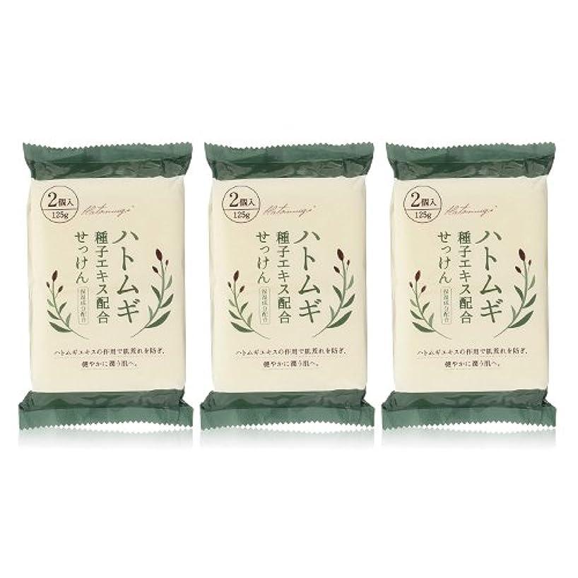 忌み嫌うルートほかにハトムギ種子エキス配合石けん 125g(2コ入)×3個セット(計6個)
