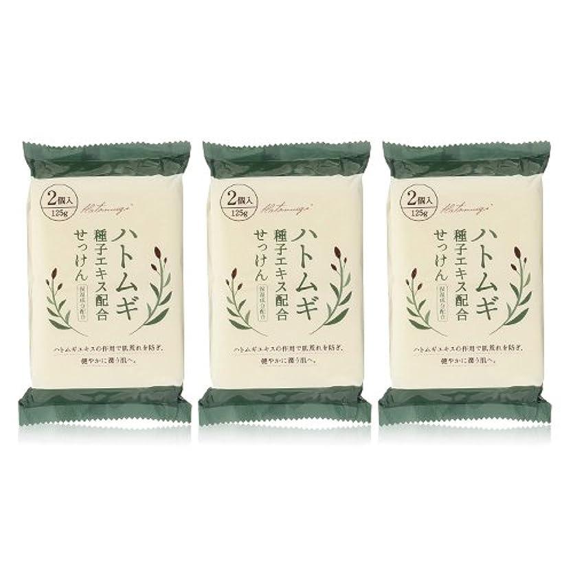 芸術ファンブルずんぐりしたハトムギ種子エキス配合石けん 125g(2コ入)×3個セット(計6個)