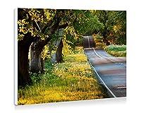 夏の風景、道路、木、草、太陽の光 - 壁の絵 壁掛け ソファの背景絵画 壁アート写真の装飾画の壁画 旅行 風景 景色 - (60cmx40cm)