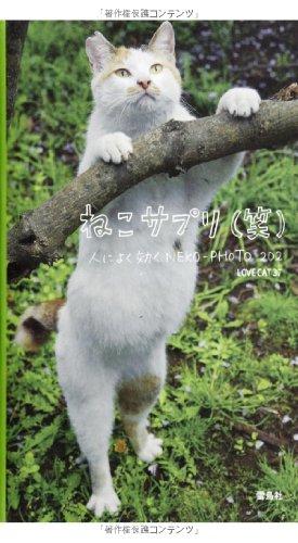 ねこサプリ(笑)人によく効くNEKO-PHOTO202の詳細を見る