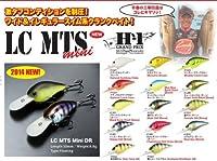 ラッキークラフト MTS ミニ DR ・1301BKバックチャート(ボーン)