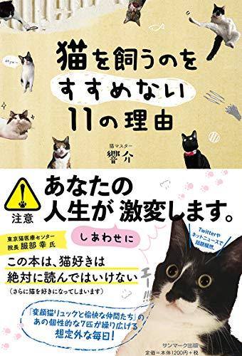猫を飼うのをすすめない11の理由