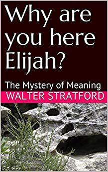 Why are you here Elijah?: The Mystery of Meaning by [Stratford, Walter]