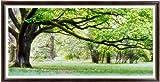 これ素敵っ クロスステッチ 刺繍キット 大樹 L309 並木トレーディング