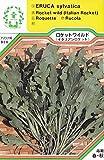【種子】 イタリアン・ロケット(ロケット ワイルド) 三笠園芸