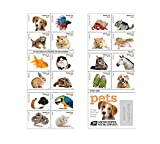 (1 sheet of 20 stamps) - 20 Forever USPS stamps Pets celebrate animals in our lives that bring joy, companionship, and love (1 sheet of 20 stamps)