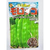 アタリヤ農園 つるあり モロッコ いんげん豆