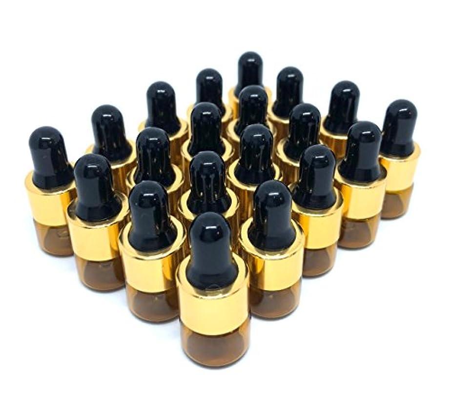 鳴らす不適切な印象的スポイト 遮光瓶 アロマオイル 精油 小分け用 ガラス製 保存容器 20本 セット (1ml)