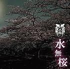 水無桜【Dタイプ】【通常盤】(在庫あり。)