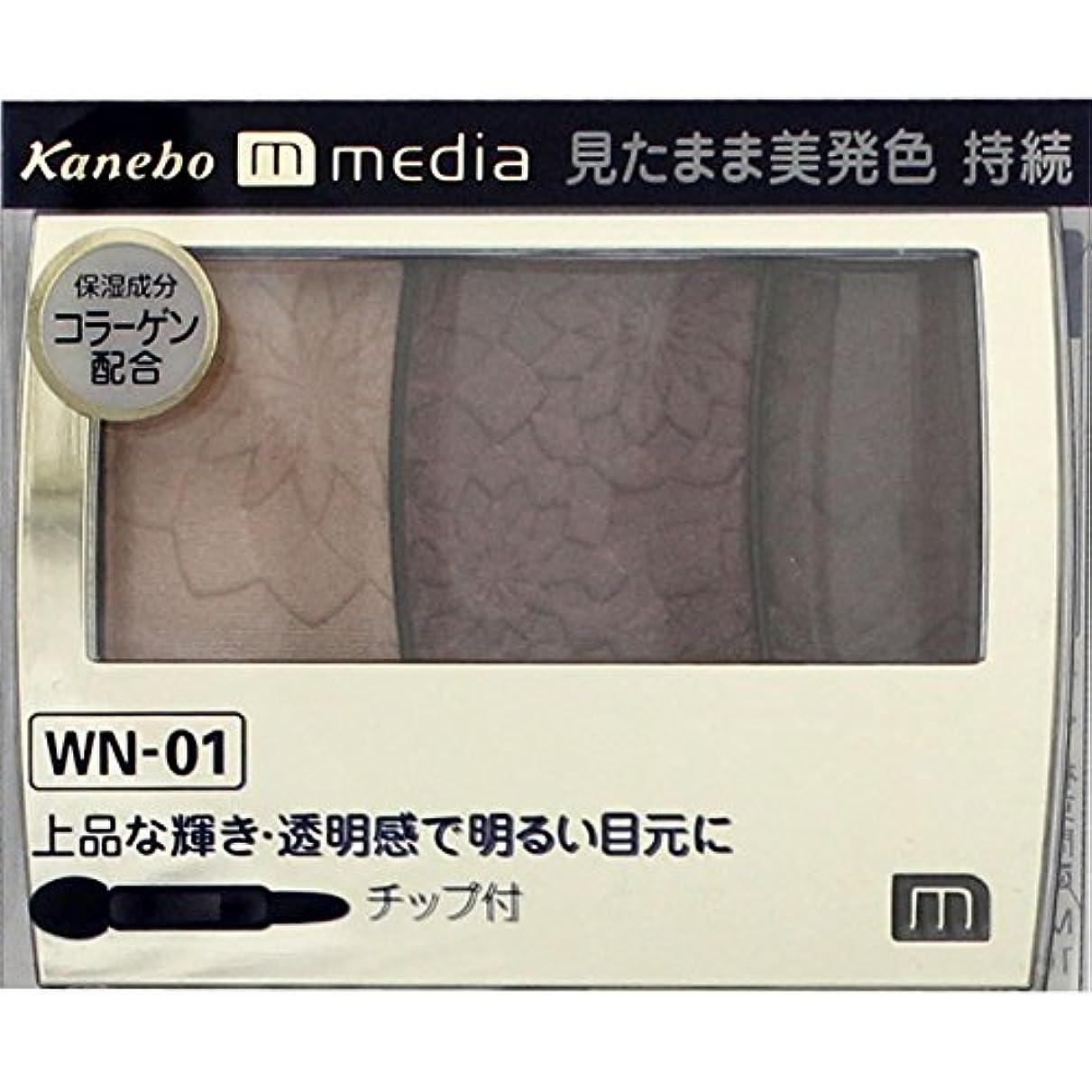 幸運なキャップバイナリ【カネボウ】 メディア グラデカラーアイシャドウ WN-01