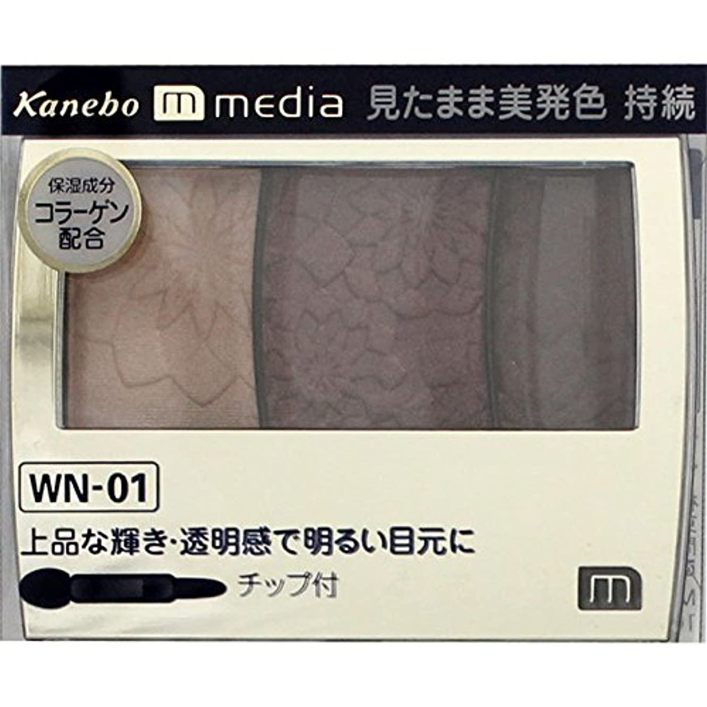 わずらわしい田舎者祈り【カネボウ】 メディア グラデカラーアイシャドウ WN-01