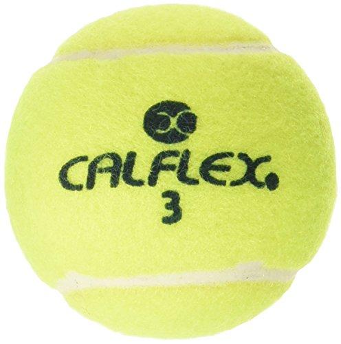 サクライ貿易(SAKURAI) CALFLEX(カルフレックス) テニス 硬式 ボール 1ダース 12個入 LB-12