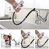 Auralum 洗面用混合栓 シングル混合栓 洗髪用 ホース引き出し式 手洗いボウル 洗面台 蛇口 水道