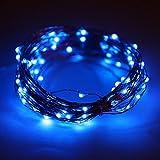 Lyhoon LEDジュエリーライト 5m 50球 電池式 点灯8パターン・コントローラ付 防雨仕様 (5M, ブルー) [並行輸入品]