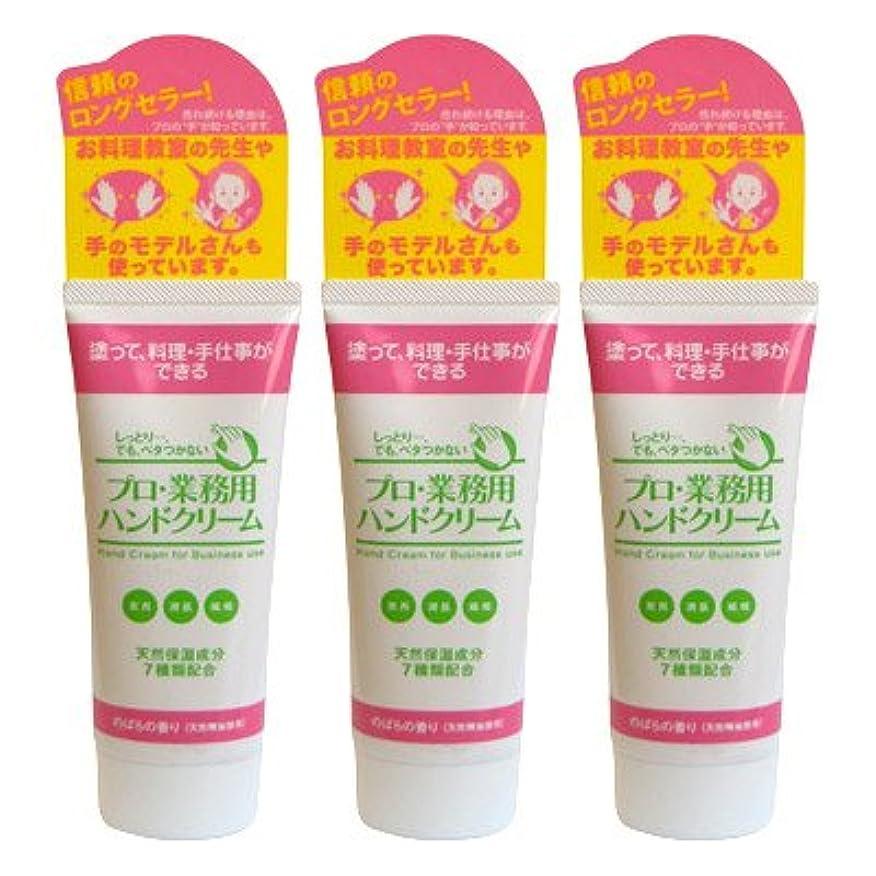 語実証する肌寒いプロ業務用ハンドクリーム(のばらの香り) 3個セット
