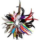 20PCS Feather Teaser Cat Toy Replacement, Cat Wand Toys and Teaser with Bell Refills, Interactive Catcher Teaser and Funny Ex