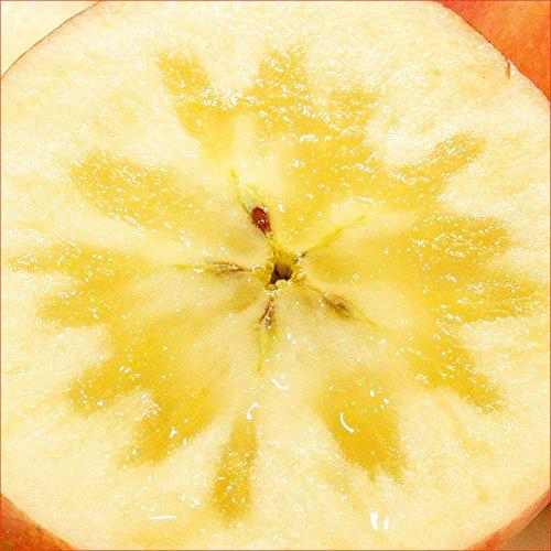 山形県産 蜜入りりんご 高徳(こうとく) 1.5kg(6玉-12玉入り)