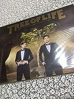 ツアーパンフレット 東方神起 2014年 ライブツアー TREE
