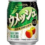 ウメッシュ プレーンソーダ 缶 250ml