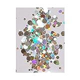 Bonpointボンポワン ネイル レジン ラウンド ホログラム オーロラ 選べるカラー 10色セット (♯08シルバー)