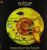 Remember the Future [12 inch Analog]