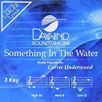 Something In The Water [Accompaniment/Performance Track] (Daywind Soundtracks)【CD】 [並行輸入品]