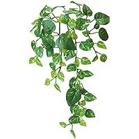 ポピー 造花の観葉植物 ポトス ツタ数:5 GL-5021