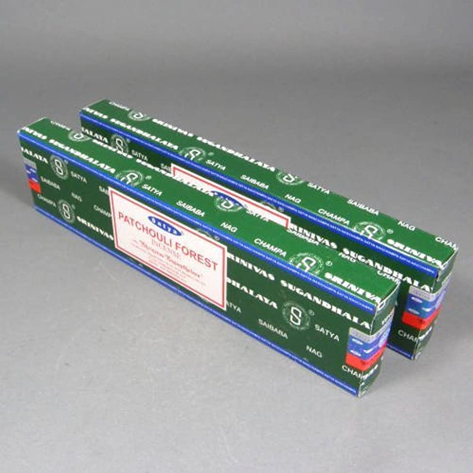空白水差し小道Satya Patchouliフォレスト香スティック、2 x 40グラムボックス、80グラム、合計( in212 )