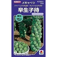 キャベツ 種 【 早生子持 】 種子 小袋(約2ml)