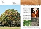 種類・特徴から材質・用途までわかる樹木と木材の図鑑 画像