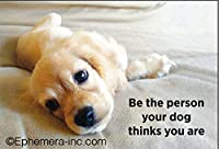 Be the Person Your Dog Thinks You Are – 長方形マグネット