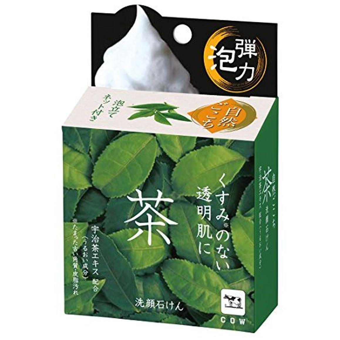 波コインきゅうり自然ごこち 茶 洗顔石けん 80g × 6個セット