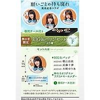非売品 限定 AKB48 SKE48 NMB48 HKT48 NGT48選抜総選挙シングル 願い事の持ち腐れ BIG缶バッジセット 横山由依 武藤十夢 木崎ゆりあ 神の手