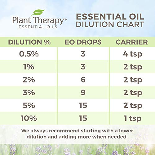 Plant Therapy Top 6 Essential Oils Sampler Set | Lavender, Eucalyptus, Others In Wood Box | 100% Pure | 10 mL (1/3 oz)