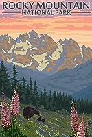 ロッキーマウンテン国立公園、コロラド州–Bear Family and Spring Flowers 12 x 18 Art Print LANT-31198-12x18