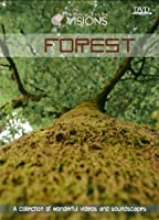 Visions 5: Forest [DVD] [Import]