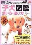 人気の子犬図鑑 飼い方・選び方