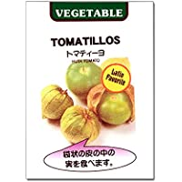 [メキシコ野菜 サルサソースに!春まき タネ]トマティーヨ(食用ホオズキ)の種 3袋セット ノーブランド品